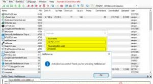 NetBalancer 10.1.2.2393 Crack with Serial Key Free Download