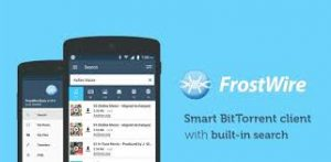 FrostWire 6.8.7 Crack with Serial key Free 2020 Download